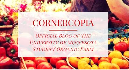 Cornercopia blog image