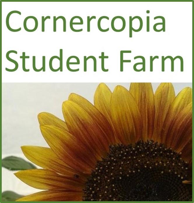 Cornercopia student farm image