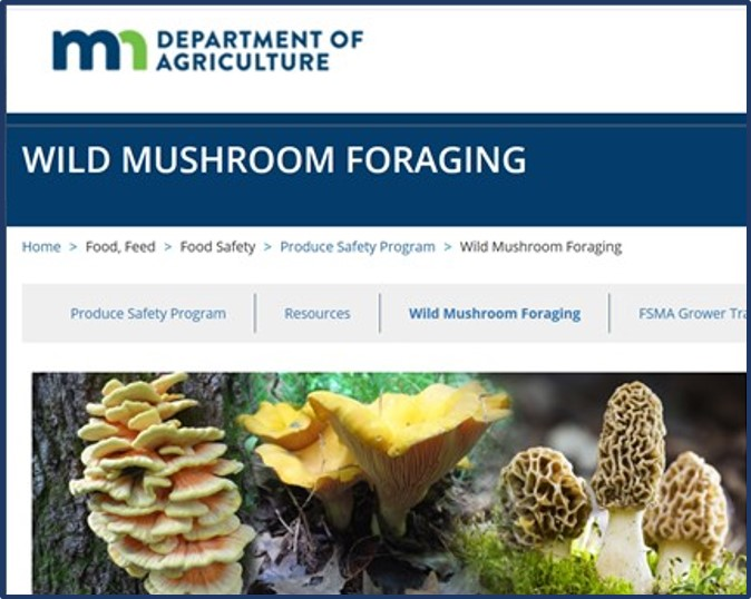 MDA wild mushroom foraging