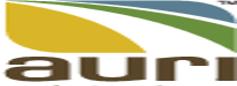 auri logo