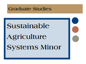 graduate minor image